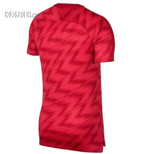 Koszulka Nike Polska Dry Squad Top GX